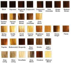 Dark Strawberry Blonde Hair Color Chart Find Your Perfect