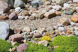 big ideas for small rock gardens landscaping