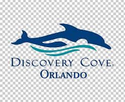 discovery cove seaworld orlando universal studios florida busch gardens tampa aquatica png clipart amusement park aquatica