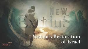 Image result for Yeshua will restore Israel