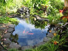 country gardens.  Country Hauula Guest House Rental  Magical Koi Pond Relax In A Hammock By On Country Gardens O