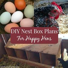 free diy nest box plans for your en coop