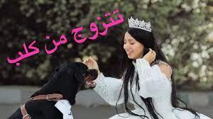 هبه مبروك تتزوج من كلب عشان التريند - YouTube
