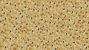 1920x1080 doge in e doge wallpaper 1920x1080 14011
