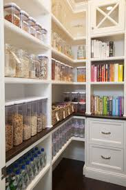 Decorations:Kitchen Pantry Storage Solutions With Book Storage Wood Built  In Cabinets Kitchen Pantry Storage