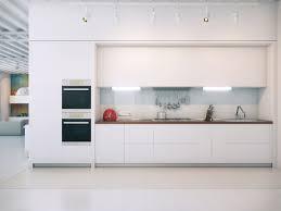 Plain White Kitchen Cabinets Traditional Kitchen Cabinets Photos Amp Design Ideas 64 Unique
