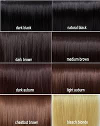 Chocolate Hair Weave Color Chart 28 Albums Of Chocolate Brown Hair Color Number Explore