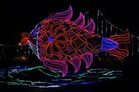 Fish Christmas Lights