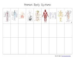 Body Systems Chart Body Systems Foldable Human Body Systems Chart Pdf