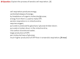 ib question explain the process of aerobic cell respiration 8