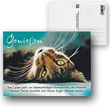 Cartolini Postkarte Karte Sprüche Zitate 155 X 115 Cm Genießen Das