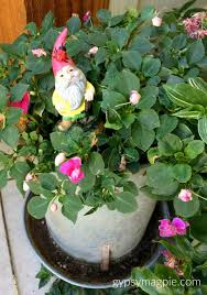 sharing where i hunt for fairy garden treasures like this roaming gnome so much