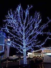 outdoor tree lighting ideas. Outdoor-Christmas-Lighting-Decorations-42 Outdoor Tree Lighting Ideas O