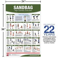 Back Workout Chart Step By Step Sandbag Exercise Poster Chart High Intensity Exercises
