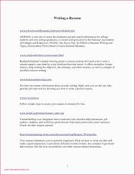 One Page Resume Templates Sample 28 E Page Resume Examples Format