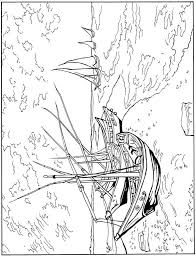 Small Picture 223 best art coloring pages images on Pinterest Coloring pages