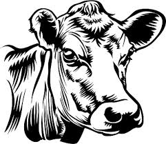 beef cow head clip art. Perfect Beef Cow Head Clipart Intended Beef Head Clip Art E