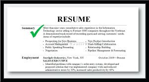 Summary For Resume Examples Beauteous Summary For A Resume Examples Samples Of Executive Resumes And Sales