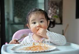 16 Months Old Baby Food Ideas Along With Recipes