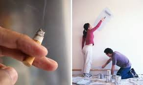 paint over stained walls