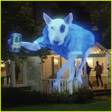 Bud Light Dog Superbowl Commercial