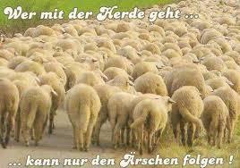 Lebensmotto Wer Mit Der Herde Geht Spruechetantede