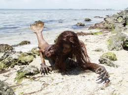 Image result for strange mermaid creatures