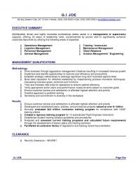 How To Write A Resume Summary Stunning How To Write Resume Summary Examples Of For Wonderful A Templates