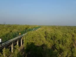 Sajnakhali Wildlife Sanctuary
