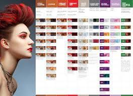 Pravana Color Vivids Chart Pdf Google Search Pravana
