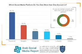 Who Owns The Media Chart 46 Of Arab Internet Users Own More Than One Account On
