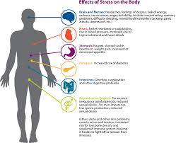 stress effect on your body  stress effect on your body