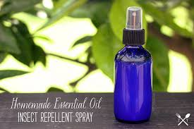 Image result for diy bug spray doterra