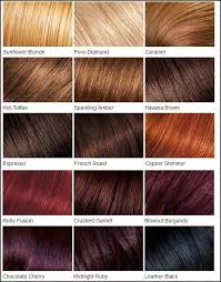 Copper Brown Hair Color Chart Loreal Color Chart Different Blonde Brown Red Dark Hair