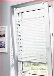Fenster Schalosien 269513 Jalousien Badezimmer Liebenswert