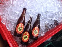 Image result for why i drink red horse vs korean beer