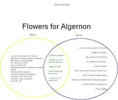 best flowers for algernon images flowers for  flowers for algernon study guide gradesaver