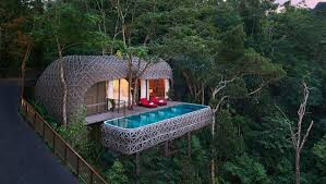 tree houses. Modren Tree Tree Houses In Thailand Inside Tree Houses H