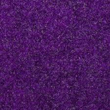 purple carpet texture. Fuzzy Purple Carpet Texture