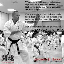 Martial Arts Quotes Adorable Contemporary Martial Arts Quotes Martial Arts Styles Fighting