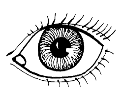 Mond Kleurplaat Google Zoeken 5 Duyu Coloring Pages Human Eye