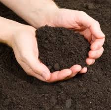 garden dirt. Brilliant Garden Greensboro Topsoil Garden Soil And Fill Dirt Intended