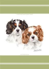 cavalier king charles pupz waggy dogz tea towel a bentley cushions king charles spaniel