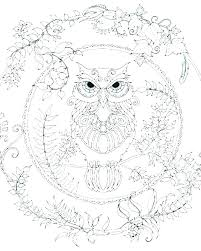 Coloring Pages Owl Owls Coloring Pages Owl Printable Of Adult To