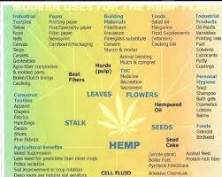 Hemp Uses Chart Hemp Healthy Today Hemp The Uses Are Endless