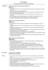 Director Consumer Marketing Resume Samples Velvet Jobs