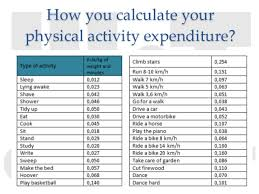Energy Expenditure Chart For Activity Energy Expenditure