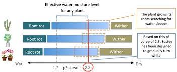 Plant Moisture Meter Chart Soil Moisture Meter Review Best Product Design Xeriscapes