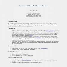 Resume Examples For Jobs With Little Experience Elegant Elegant