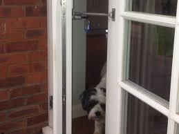 Gallant Sliding Glass Door With Dog Door Built In Small Pet Door For ...